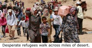 03-SyrianImmigrants-530x250