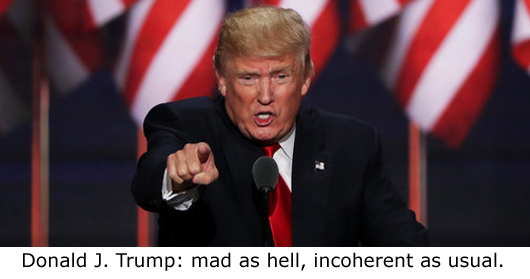 Trump-Mad&Incoherent-530
