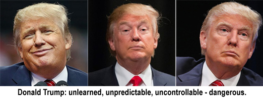 trump-notmypresident-530